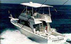 Fish check charters key west for Deep sea fishing key west