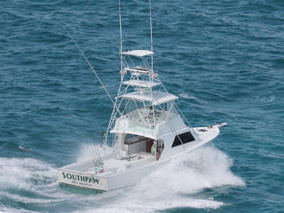 Key west deep sea sport fishing boat with capt brad simonds for Key west deep sea fishing