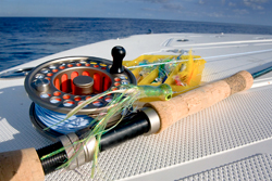 Key west fly fishing charters for flats and offshore for Key west fly fishing